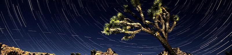 Cielo stellato e stelle cadenti