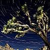 Come fotografare il cielo stellato