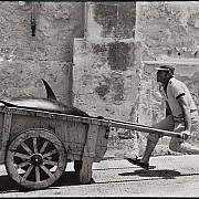 Sicilia 1975