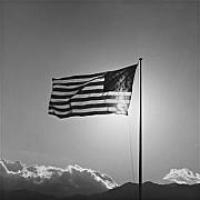 mapplethorpe bandiera 1987