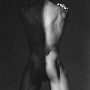 mapplethorpe dan s 1980