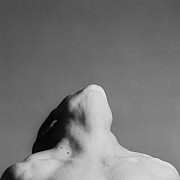 mapplethorpe lisa lyon 1982 1