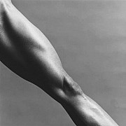 mapplethorpe lisa lyon 1982 12