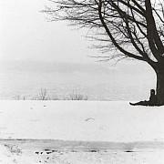 mapplethorpe paesaggio invernale rhinecliff