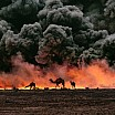 steve mc curry camels smoke fire gulf war al ahmadi kuwait 1991