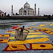 steve mc curry taj mahal agra india 2000