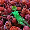 steve mc curry uomo festa hindu rajasthan india 1996