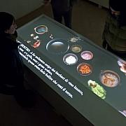 museo 500 il cinquecento interattivo palazzo podesta4