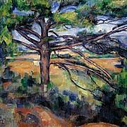 paul cezanne grande pino e terre rosse 1890 1895