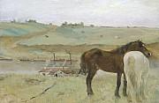 Edgar degas cavalli in un prato 1871