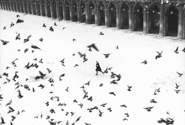 Venezia 1960