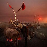 nilo accampamento allevatori di notte sorgere luna piena jonglei sudan sud 2012