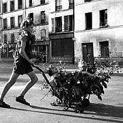 robert doisneau camouflage paris 1944