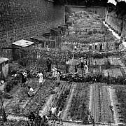 robert doisneau dans les fosses du fort d ivry 1949
