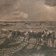 alla stanga 1886 1888