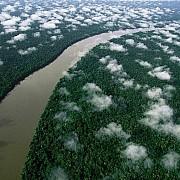 yann arthus bertrand fiume orinoco esmeralda foresta amazzonica venezuela