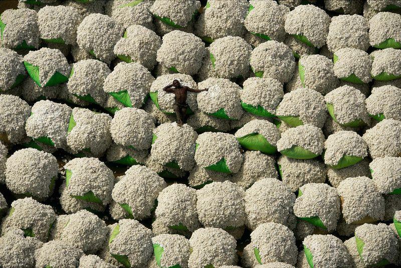 Balle di cotone, Thonokaha, regione di Korhogo, Costa d'Avorio