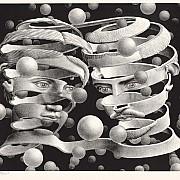 Escher in mostra 9