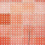color minimalism c tauras beliavcevas 13