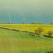 Gocce di pioggia fotografate con il giusto tempo di esposizione