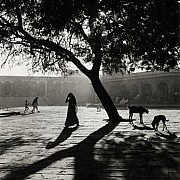 Ferenc Berko Early Morning Market Nowshera India 1945