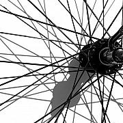raggi ruota bicicletta ombre