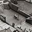 martin munkacsi carrozzina sul tetto anni quaranta