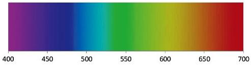 Spettro delle lunghezze d'onda visibili