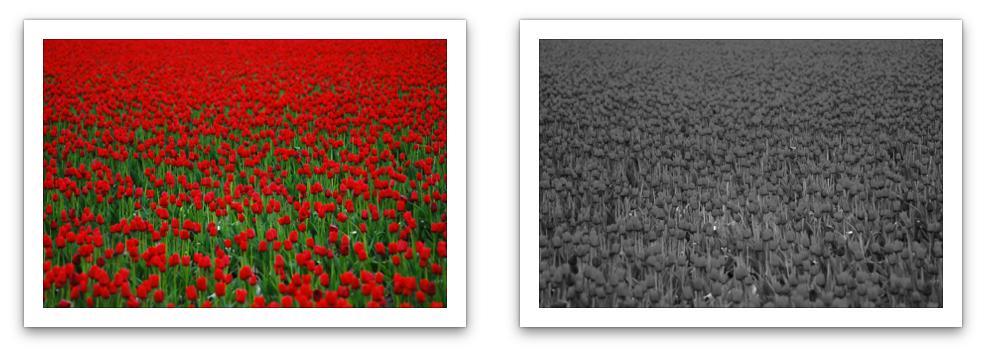 Togliere semplicemente i colori a volte genera immagini poco interessanti