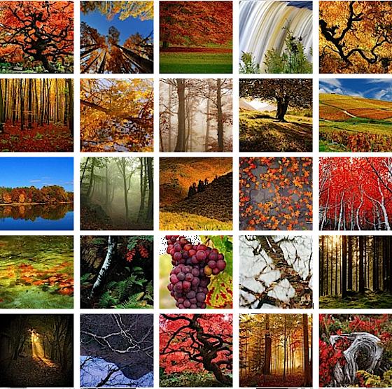 Foto mosaico d'autunno